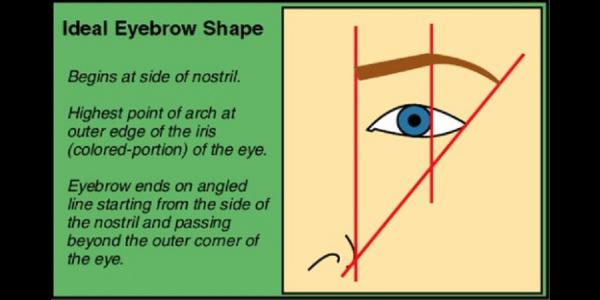 Eyebrow restore
