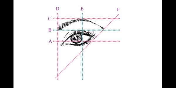 Eyebrow surgery shapes